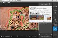 Movavi Photo Editor 2.1.0 Portable + Final + новые акционные ключи от 01.06.2015
