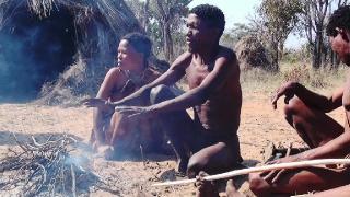 ������ / Faszination Afrika (2012) BDRip AVC