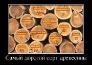 Демотиваторы '220V' 18.06.15