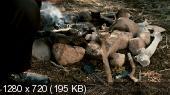 Космос: Пространство и время - 1 сезон / Cosmos: A SpaceTime Odyssey (2014) BDRip 720p + HDRip