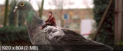 Виплала (2014) BDRip 1080p | L1