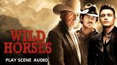 Дикие лошади / Wild Horses (2015) DVD5   DVO