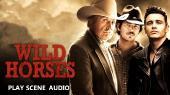 ����� ������ / Wild Horses (2015) DVD5 | DVO