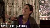 Семейные ценности / Family Values (2011) WEBRip 1080p | MVO