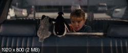 Красотки в бегах (2015) BDRip 1080p | D