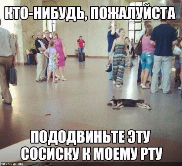 http://i70.fastpic.ru/thumb/2015/0831/81/df39d2f9059a81c57837cc301835a581.jpeg