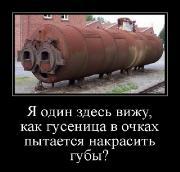 Демотиваторы '220V' 07.09.15
