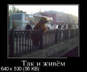 http://i70.fastpic.ru/thumb/2015/1012/2f/5080bd910ee8ee1b95d9dc434027a62f.jpeg